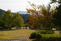 犬とお散歩コース 関西 ドッグカフェ